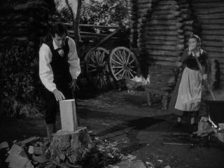 Molodoj.mister.Linkoln.1939.XviD.DVDRip.egoleshik